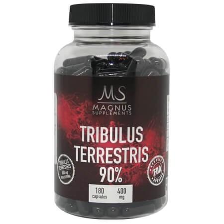 Magnus – Tribulus Terrestris