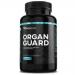 WXN Organ guard